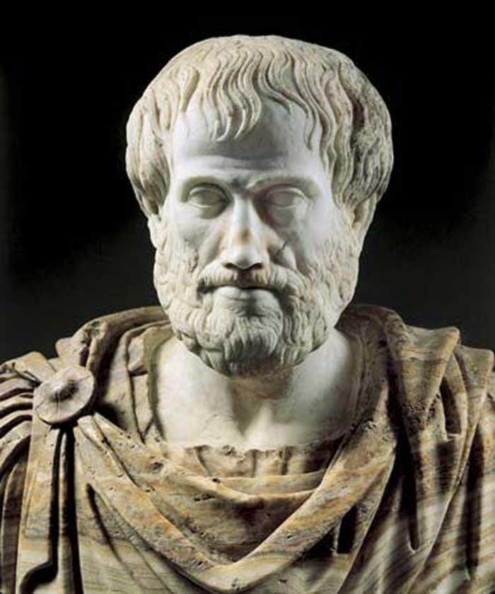 ارسطو، فیلسوف بزرگ، به ما میآموزد که شجاعت مرز بین دو حد واکنش ما به خطر است: حد خیلی کم، که به آن عنوان بزدلی میدهد، و حد خیلی زیاد، که به آن بیملاحظگی میگوید.